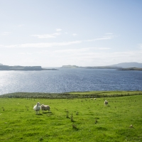 Traveling Scotland | 2018